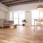 J-REIT(Jリート)の鑑定評価からみたマンションの価格分布