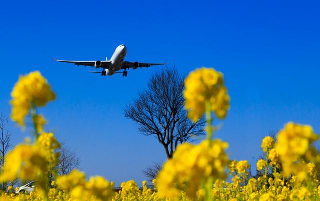 不動産は空も飛ぶし、水にも浮かぶ ―飛行機、船舶、意外な不動産―