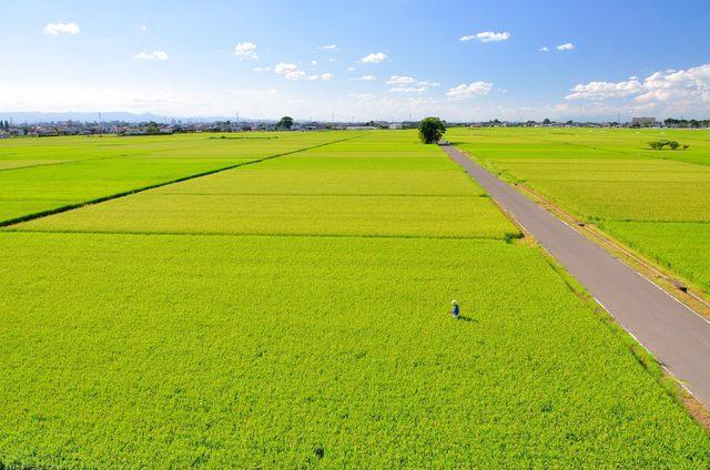 日本の田園_REIT