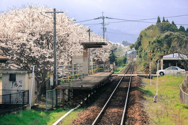 【駅カタログ】 不動産投資に役立つ駅ごとの特性レポートを近日公開します